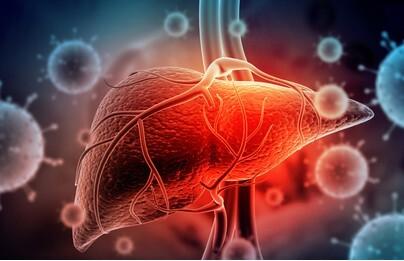 What is hepatitis? What is liver disease?